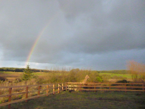 Rainbow over Frugaldom