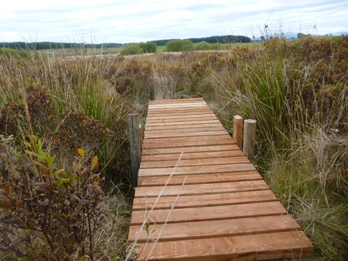 The rickety footbridge has been DIY renovated!