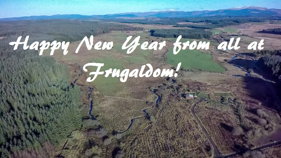 Happy New Year from Frugaldom
