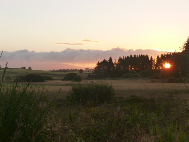 Sun rising over the forest at Frugaldom